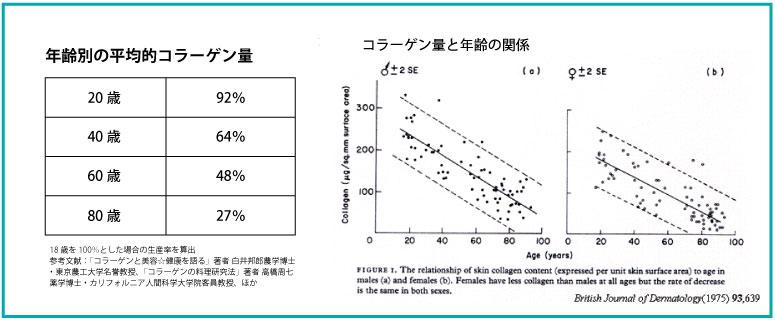 世代別のコラーゲン合成量の推移