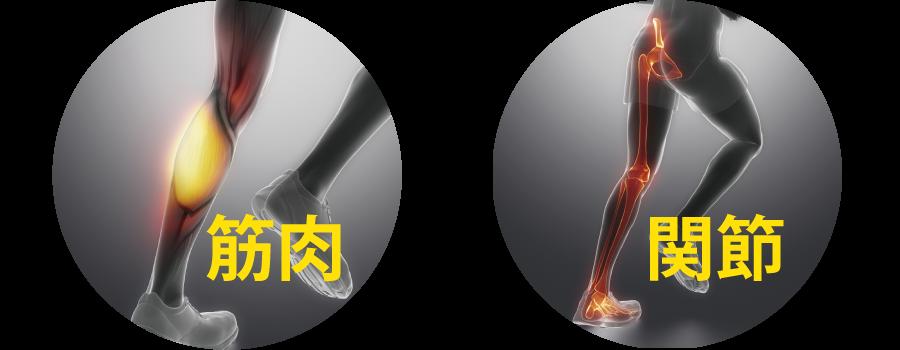 筋肉や関節への衝撃