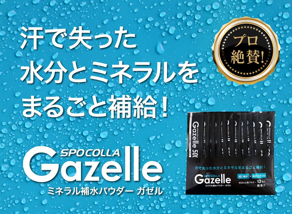 Gazelle_top